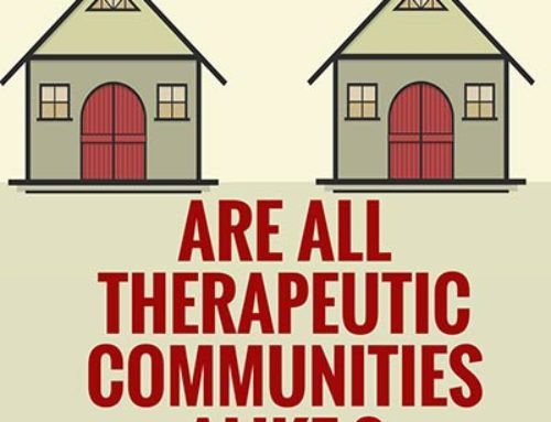 Are all therapeutic communities alike?